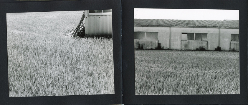 pg-07-08